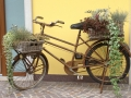 home-bici